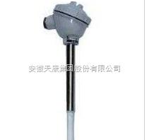 WRPF-430G防腐热电偶