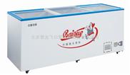 全新白雪SD/C-538FA冰柜/冷冻冷藏柜/雪糕展示柜/北京白雪冷柜