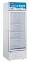 全新白雪SC-130FB北京白雪冰柜/冷藏展示柜/医用冷藏展示柜茶叶柜