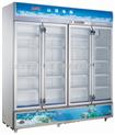 全新白雪SC-1200F北京白雪冰柜/冷藏展示柜医用冷藏展示柜茶叶柜