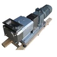 转子泵︱输送高粘度物料转子泵