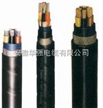 NH-VV22 4*10+1*6耐火阻燃电缆