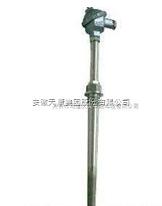 WRE2-230NM天康水泥厂耐磨热电偶
