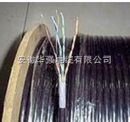 rvsp-30*2*0.5屏蔽电缆