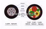 bpyjvp2-0.6/1kV 3*10 变频电缆