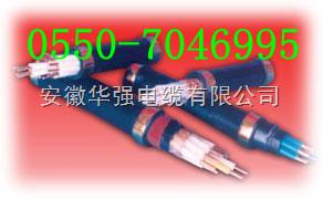 橡套电缆YZ 10*2.5