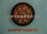 计算机电缆 DJYPVP 10*3*1.5