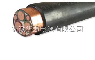 WDZ-BPYJYP2 3*70+3*16变频电缆