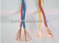 RVS-300/300V-2*0.3铜芯电缆