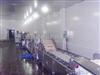 G系列果蔬清洗生产线