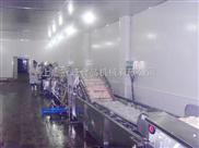 蔬菜清洗生产线