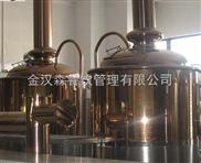 金漢森100升小型自釀啤酒設備