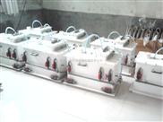 安徽省滁州市二氧化氯发生器【安全眼/排气阀】
