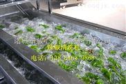 洗葉類蔬菜機器 諸城洗菜機