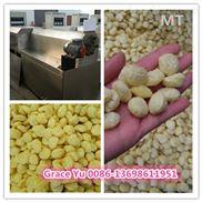 玉米片膨化机