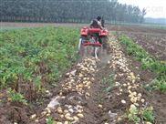马铃薯收获机