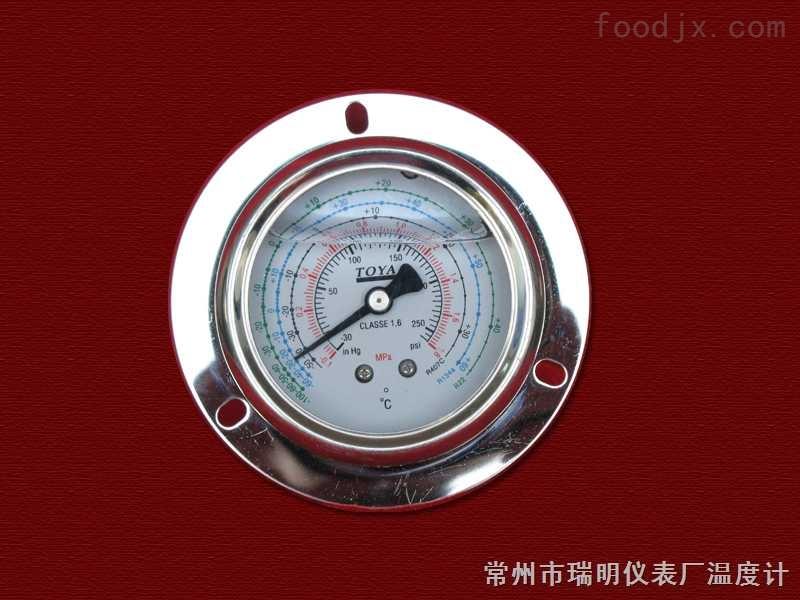耐振压力表(轴向带边型)