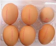 供应龙岗鸡蛋喷码机加工鸡蛋日期喷码机批发价格红墨喷码机加工(鸡蛋里挑骨头