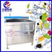 小型自动气泡洗菜机 蔬菜肉类清洗机设备