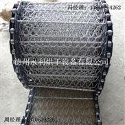 直销小型清洗机网链 小型输送机链网