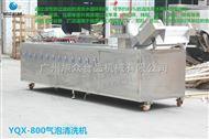 YQX-800全自动商用YQX-800蔬菜清洗机