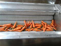 RC-1800根茎类清洗机