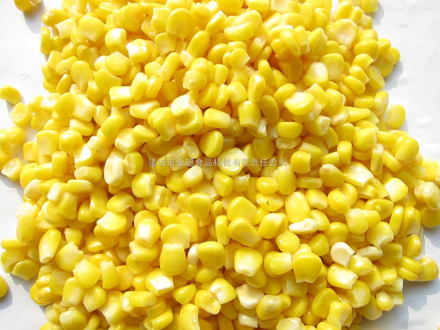 厂家直销玉米粒连续式蒸煮冷却机