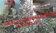 微波食品干燥杀菌设备价格