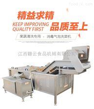 GY-QP-2500中央厨房网带式洗菜机