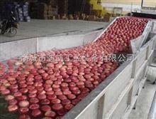 新疆红枣清洗挑拣流水线