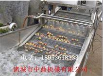 芥菜多功能清洗机