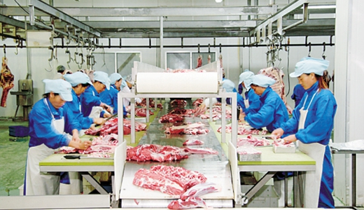 屠宰生产线投用促销量上涨 产业链逐步完善