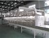 微波水产品低温杀菌设备