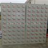 45门手机柜工厂车间铁皮柜 冷轧钢板铁皮柜 无尘车间存放柜