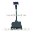 XK3100-B2沈阳机电改装秤,机械磅秤特价供应