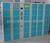 12门更衣柜存包柜 员工存包柜 员工储存柜 员工寄存柜生产厂家