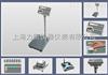 T2200P晋中大称量600kg打印秤,600kg标签打印秤